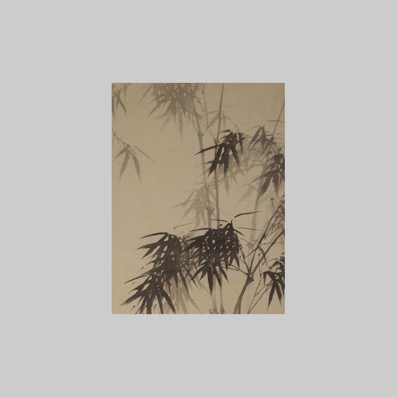 particolare foglie bambu pergamena giapponese online bonsaicreativo