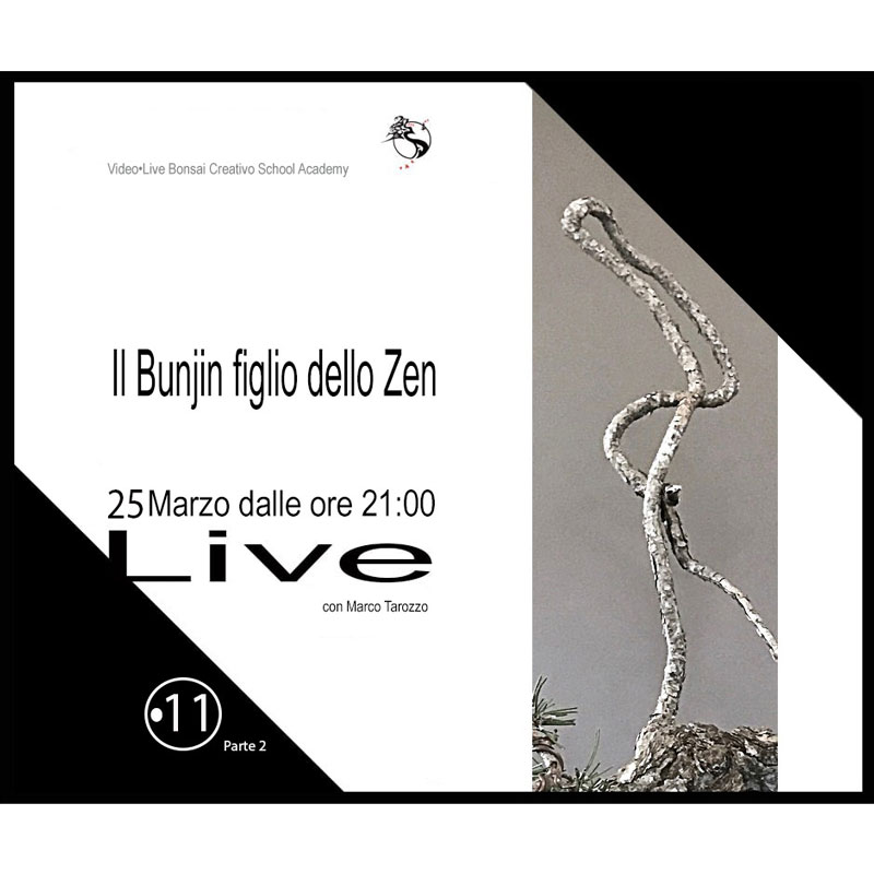 locandina live corso online bonsai marco tarozzo bonsaicreativo
