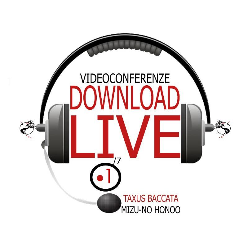 link corso bonsai videoconferenza 1 taxus baccata bonsaicreativo sandro segneri