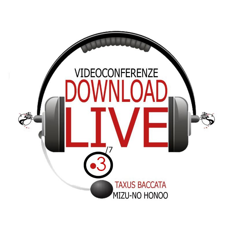 Live videoconferenza corso 3 taxus baccata bonsai estetica