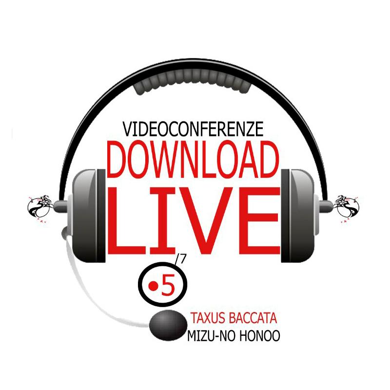 Live videoconferenza corso 5 taxus baccata bonsai cultura giapponese