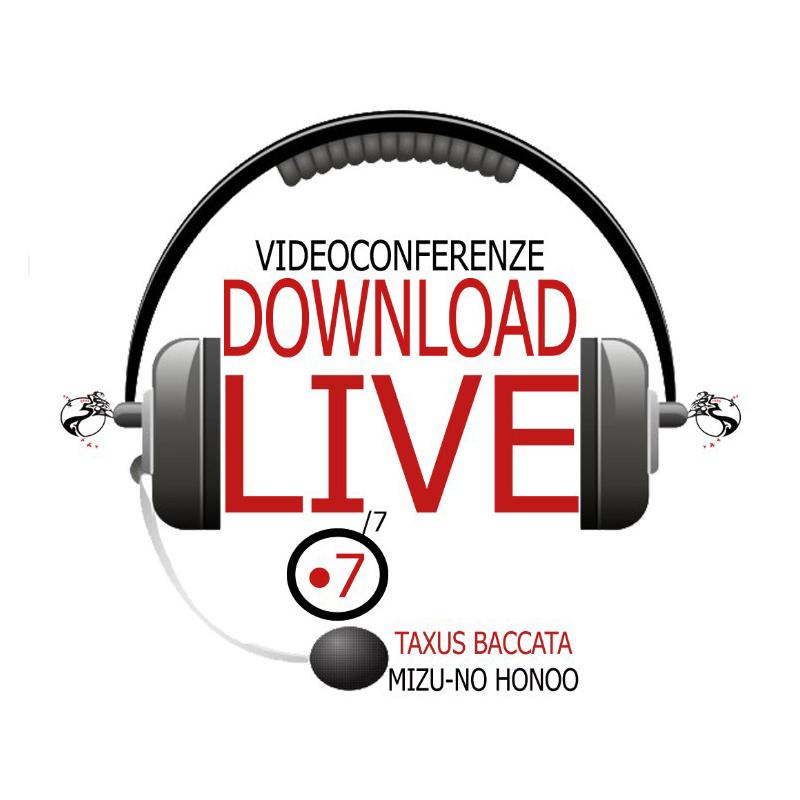 conferenza live 7 shop online video conferenza bonsai
