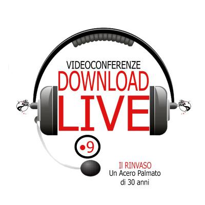 live 9 shop acquista online video conferenza bonsai