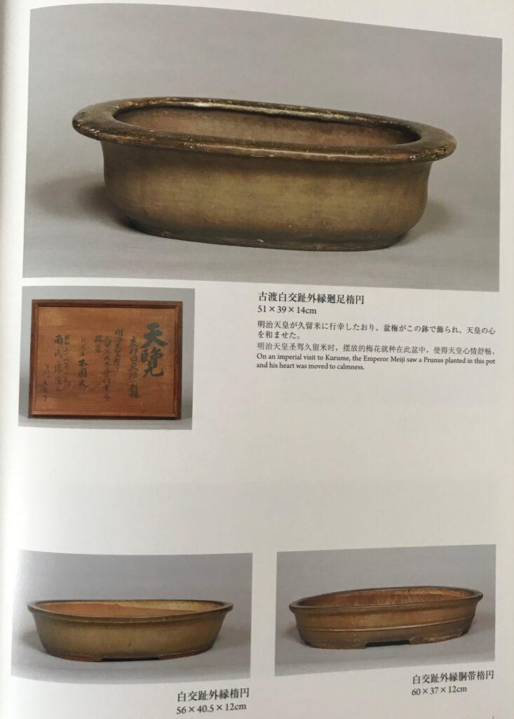 vasi bonsai antichi