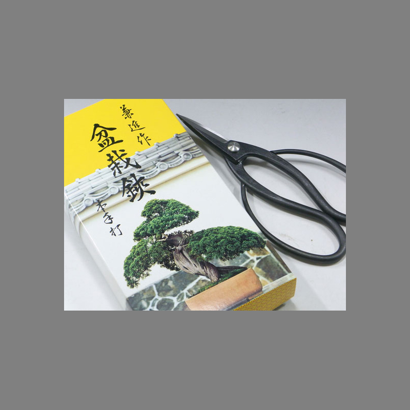 Forbici per bonsai -Large - Kaneshin – Blue steel -180mm/330g - No.40F
