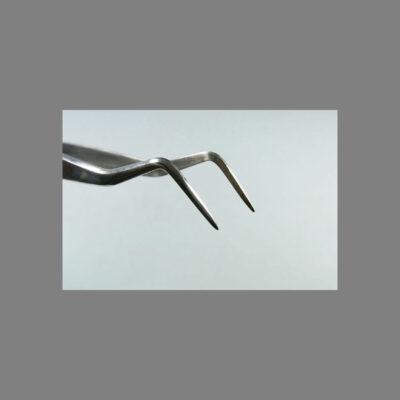 Pinzetta per bonsai – angolata -Samall - Kaneshin – Inox -160mm/105g - No.662A